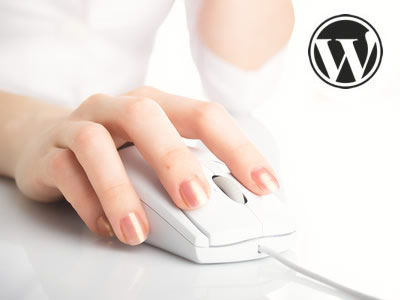 WordPress SEO Blogging